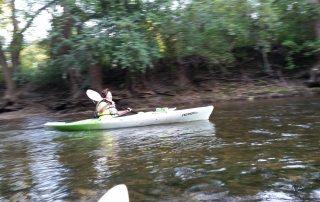 Turtle creek paddle kayak beloit south beloit friends of Turtle creek