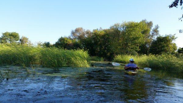 Turtle Creek Wildlife Area 9-5-16 (2) (Custom)