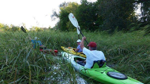 Turtle Creek Wildlife Area 9-5-16 (5) (Custom)