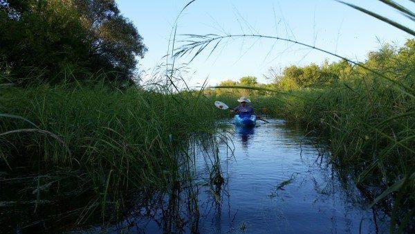 Turtle Creek Wildlife Area 9-5-16 (6) (Custom)