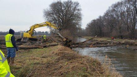 Friends of Turtle Creek blockage removal (6)