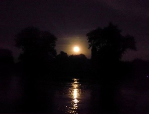 Howl at the Moon Group Paddle Trip Report