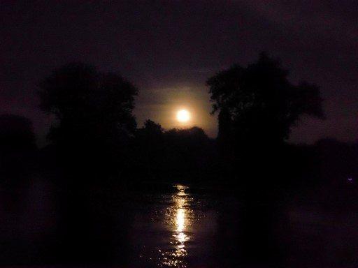 Full Moon Paddle Turtle Creek by Terry Meyers (5) (Custom)