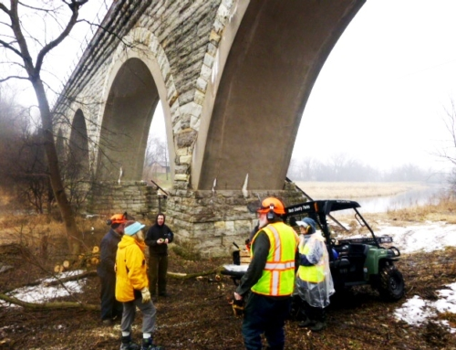Earth Day Work Day planned for Tiffany Bridge property