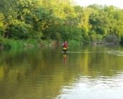 Creek Walking Turtle Creek 2 (2) (Custom)