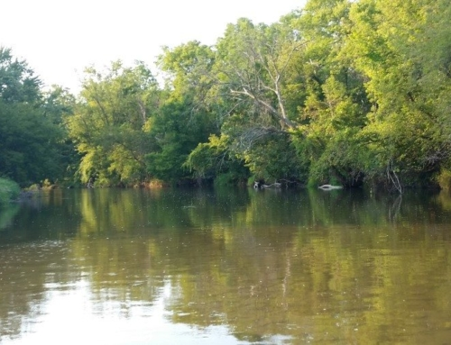 History Along Turtle Creek